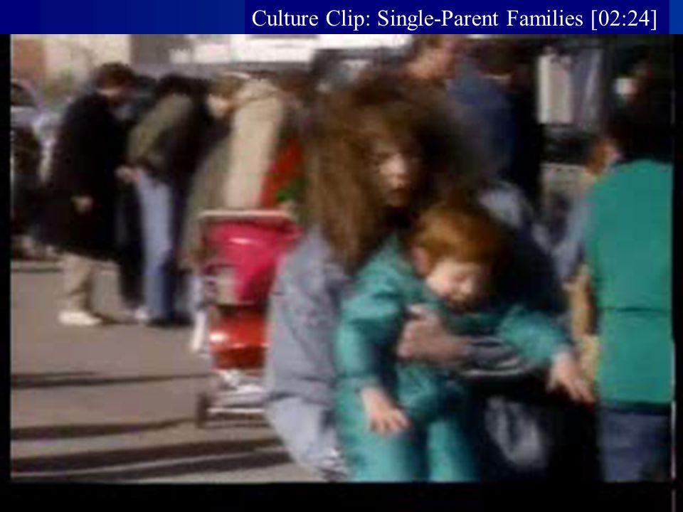 Culture Clip: Single-Parent Families [02:24]